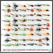 BN Trote Mosche 54 GOLD TESTA Ninfe FLY Fishing Flies MULINELLO CANNA S54A per linea B