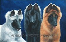 Belgian Shepherd Red Gray Tervuren Sheepdog Groenendael Pups Dog OE Art Print