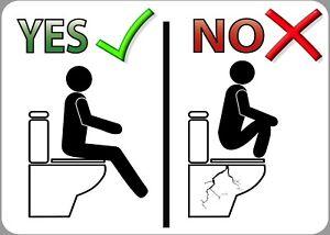 Functional or Novelty Toilet Door Vinyl Sticker- 'No Squatting' Waterproof Vinyl
