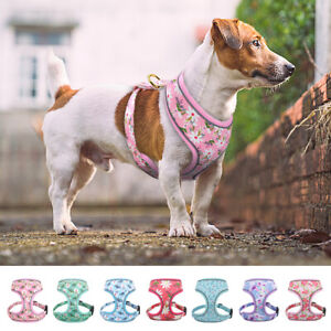 Floral Pet Puppy Dog Walking Vest Harness Reflective Jack Russell Bulldog S-XL