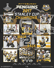 Pittsburgh Penguins 2017 Stanley Cup Championship Picture Plaque