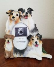"""Austrailain Shepherd Dog Picture Frame for a 3.5"""" X 5"""" Photo"""