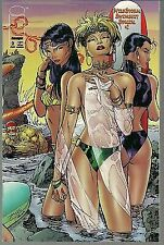 Wildstorm Swimsuit Special #2 by Image Cover by Jim Lee 1995 in VF Condition