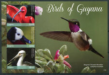 Guyana 2017 MNH Birds of Guyana 3v M/S I Storks Ibis Ducks Hummingbirds Stamps