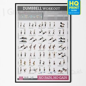 Dumbbell Workout Chart Exercise Poster Perfect To Build Muscle | A4 A3 A2 A1 |