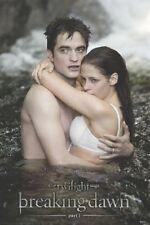 Twilight 4 Breaking Dawn Edward and Bella Water 24x36 Poster Art A32658