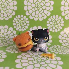 Littlest Pet Shop Persian Cat � Kitty Black 435 with orange Nom Noms hat