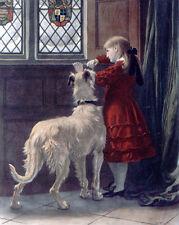 More details for deerhound irish wolfhound lurcher dog fine art engraving print - briton riviere
