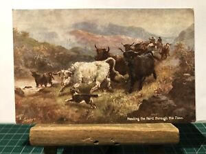 "Postcard Heading the Herd through the Pass ""Oilette"" by Raphael Tuck No. 9441"