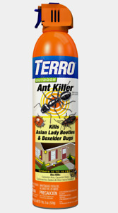 New!! Terro ANT KILLER Outdoor Kills Box Elder Asian Lady Beetles 19 oz. T1700-6