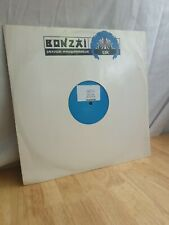 Meridian Reach For The Stars 12 Inch Vinyl Dance Record Bonzai