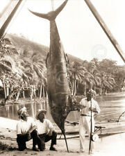 Day's Catch Vintage Tropical Fish Photograph Black and White Print Poster 8x10