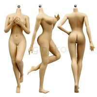 1/6 Seamless Female Action Figure Body for Hot Toys HT Phicen Head Sculpt Brown