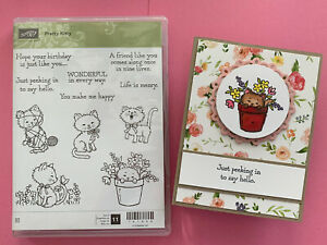 Stampin Up Pretty Kitty - Spring Flowers Butterfly Yarn Rubber Stamp & CARD NEW