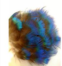 15 Pcs Peacock Blue/Green Iridescent Feathers Art, Crafts, Costume etc