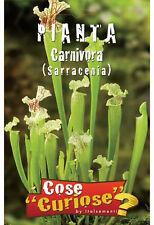 Semi/Seeds PIANTA CARNIVORA SARRACENIA