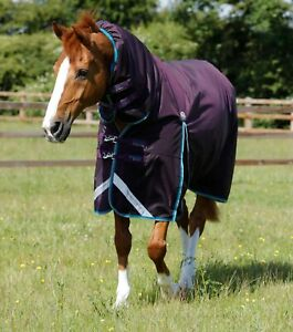 Premier Equine Buster Storm 100g Combo Turnout Rug with Snug-Fit Neck Pur (2171)