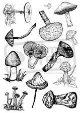 A4 'Group Of Mushrooms' Unmounted Rubber Stamp (SP00005899)