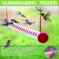 Best Hummingbird Feeder with Hole Birds Feeding Transparent Pipe Outdoor 15.7''