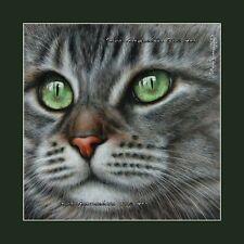 Tabby Cat Print Definition by I Garmashova