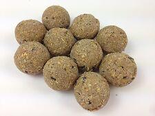 125 x Suet Fatballs Netless Wild Bird Food High Energy Contains Black Sunflower