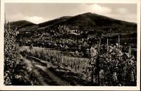 Badenweiler Schwarzwald Ansichtskarte ~1950/60 Blick von den Weinbergen Panorama