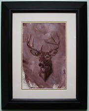 Framed Original Oil Painting Portrait of STAGS HEAD by Irish Artist THOMAS PUTT