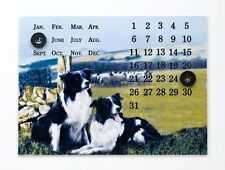 Border Fine Arts Studio - Border Collies Ready & Waiting Magnetic Calendar