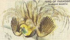 Vintage tobacco cigarette silk - use in crazy quilt - Bird Of Paradise