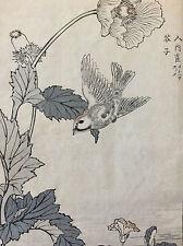 Kono Naotoyo Bairei estampe japonaise oiseau maître Kacho-e XIX e Japon Nippon