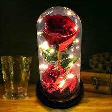 Light-Up Glass Red Rose Wedding Birthday Christmas Gift For Her Him GF BF Wife