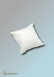 30 X 30 CM High Quality Pillows New Goose Feathers Feather Pillow 170g Cream