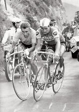 Jacques Anquetil Raymond Poulidor Cycling Greats Battle Poster