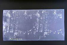 Montmorency Val-d'Oise France 3 Photos stéréo négatif sur film souple 1911