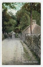 CROYARD ROAD, BEAULY: Inverness-shire postcard (C8695)