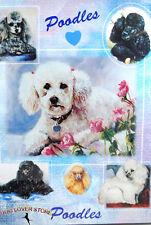 Poodle Dog Gift Present Wrap