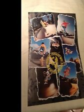 Vintage Powell Peralta 1989 Bones Brigade Skateboard Poster 17x22 old school Nos