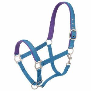 Tough 1 Nylon Padded Horse Halter With Satin Hardware Snap Throat Turquoise U-14
