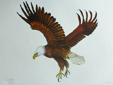 DALE HAUCK BALD EAGLE 1972 HAND SIGNED BIRD LITHOGRAPH Listed US American Artist