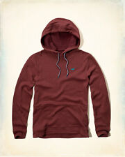 NWT Hollister Hooded T-Shirt Hoodie Burgundy Medium