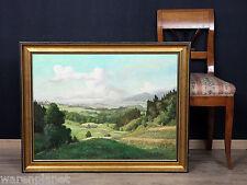 "Willy Reinhardt petróleo pinturas Antik Salzburg Alpes ""Salzburger Land mirada en 92x72"