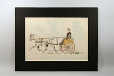 LITHOGRAPHIE ANCIENNE aquarellée, légendée, cheval, attelage, cavalière, sulky
