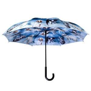 """Raining Cats & Dogs Galleria Stick Umbrella Reverse Close 48"""""""
