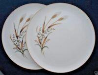Nasco fine China Golden Harvest Wheat 2 dinner plates