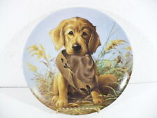 "Knowles 1987 Golden Retriever puppy Caught In The Act collectors 8-1/2"" plate"