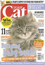 YOUR CAT September 2015 Kitten Care Advice Harness Buyers Guide How Clean Stains