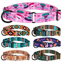 "1"" Martingale Dog Collar Nylon Training Collar Wide Pet Choke Collars for Dogs"