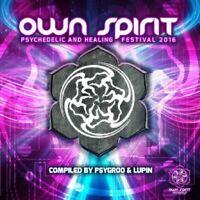 OWN SPIRIT FESTIVAL 2016   CD NEW