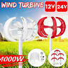 4000W 12/24V 5 Blade Lantern Power Wind Turbines Generator For Charge Controller