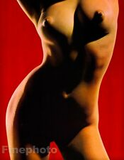 1968 Original 16x20 ASIAN FEMALE NUDE Torso Japan Photo Art By SUSUMU MATSUSHIMA